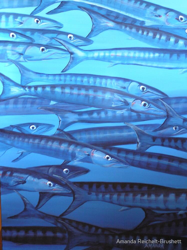 Barracuda blues by Amanda Reichelt-Brushett