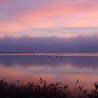 Derwent Dawn by Asoka