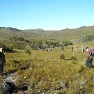 Heemskirk falls in the middle distance - bush bash to get there  by gaylene