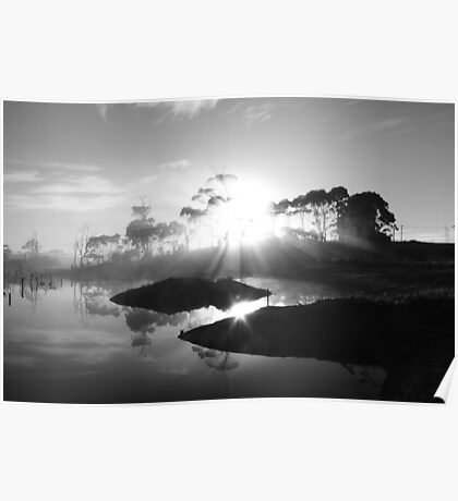 black and white sunrise at Forest  in far nor west Tasmania , Australia Poster
