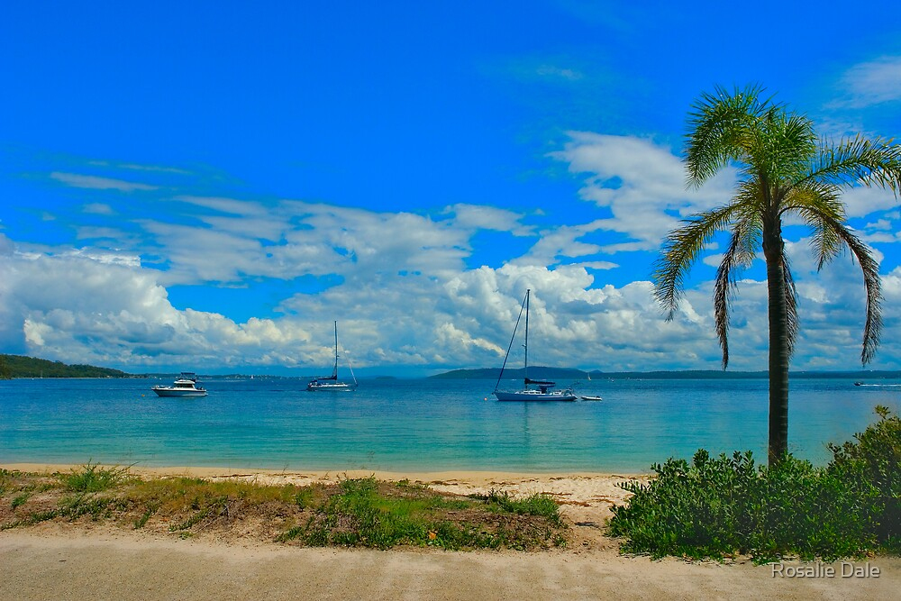 Nelson Bay by Rosalie Dale
