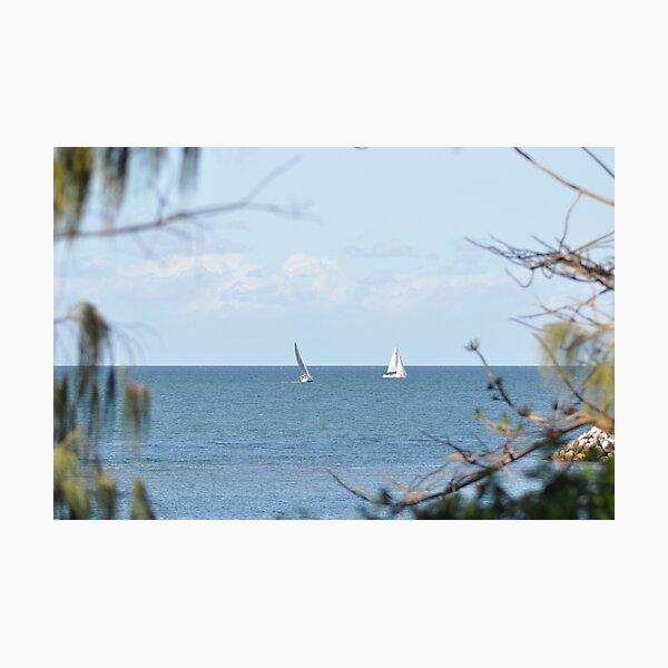 Yachts on Moreton Bay Photographic Print
