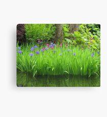 Tranquil  Irises Canvas Print