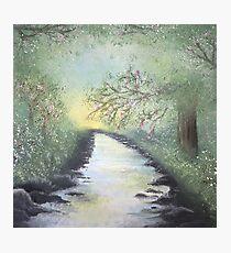 Oriental Cherry Blossom River Photographic Print
