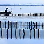 Fisherman of the lagoon by Hercules Milas