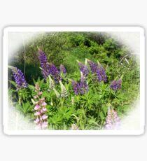 Lupin Garden Sticker