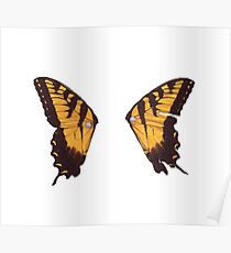 Paramore Butterfly Poster