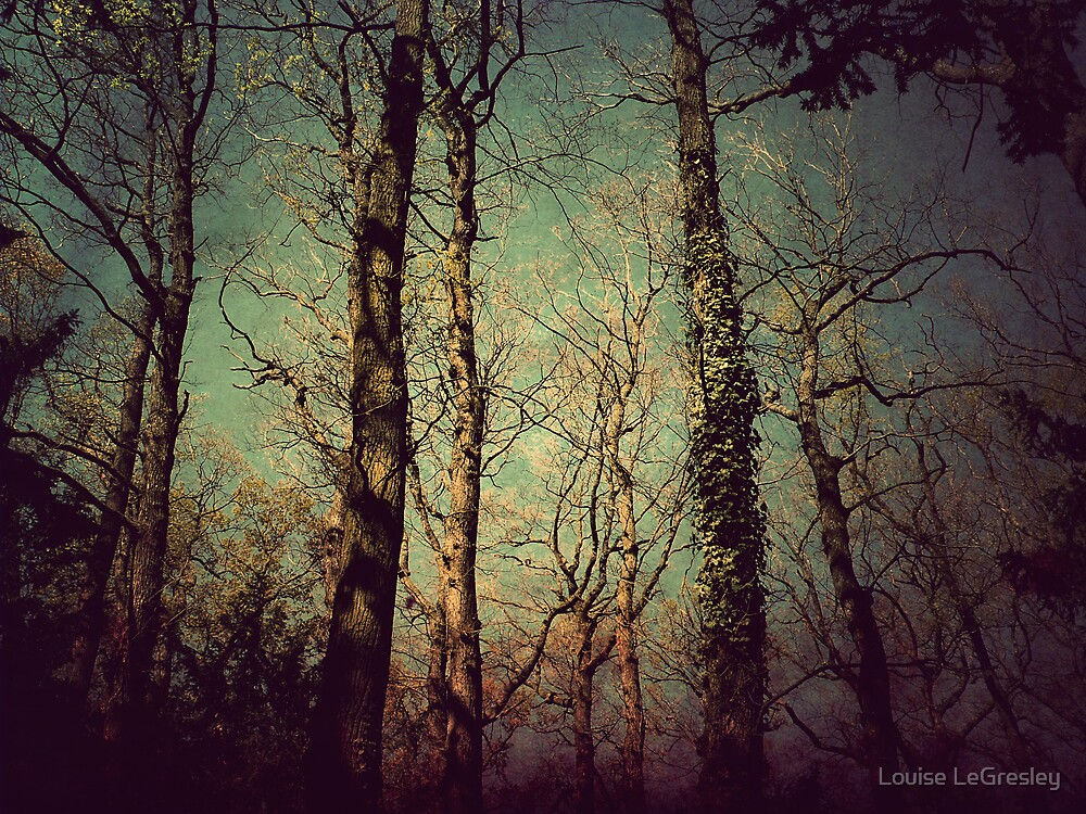 { enchanted forest } by Louise LeGresley