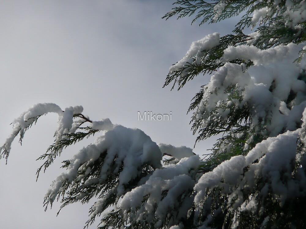 Tree In The Snow by Mikoni
