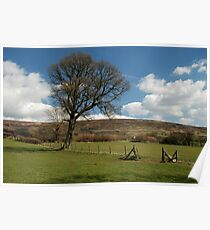 Another Farndale landscape Poster