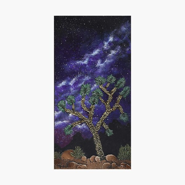 Starry Joshua Tree Photographic Print