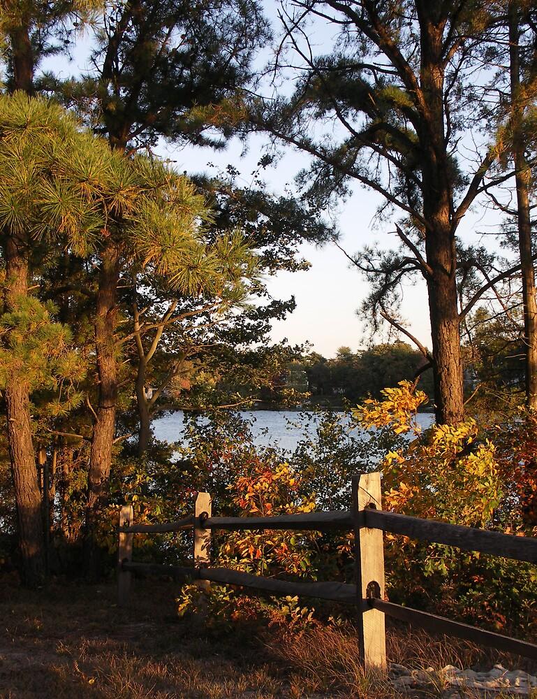 Country Lakes by Marilyn Jones