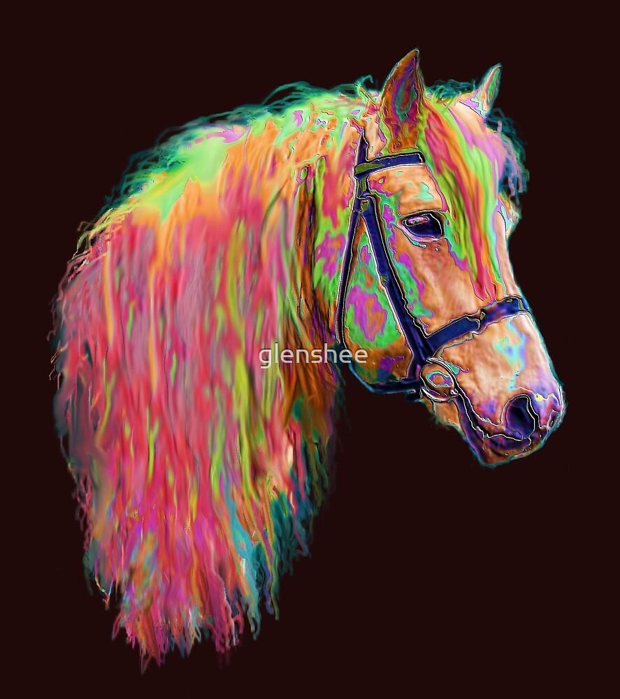 Rainbow pony. by glenshee