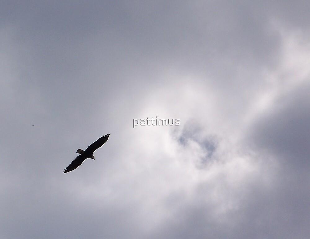Break in the Clouds by pattimus
