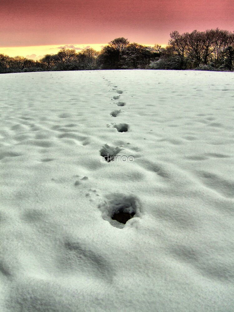 Dynamic Steps snow kent sunset by duroo
