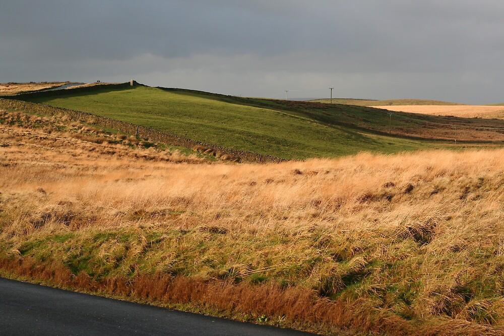 Yorkshire Dales by Jannaya