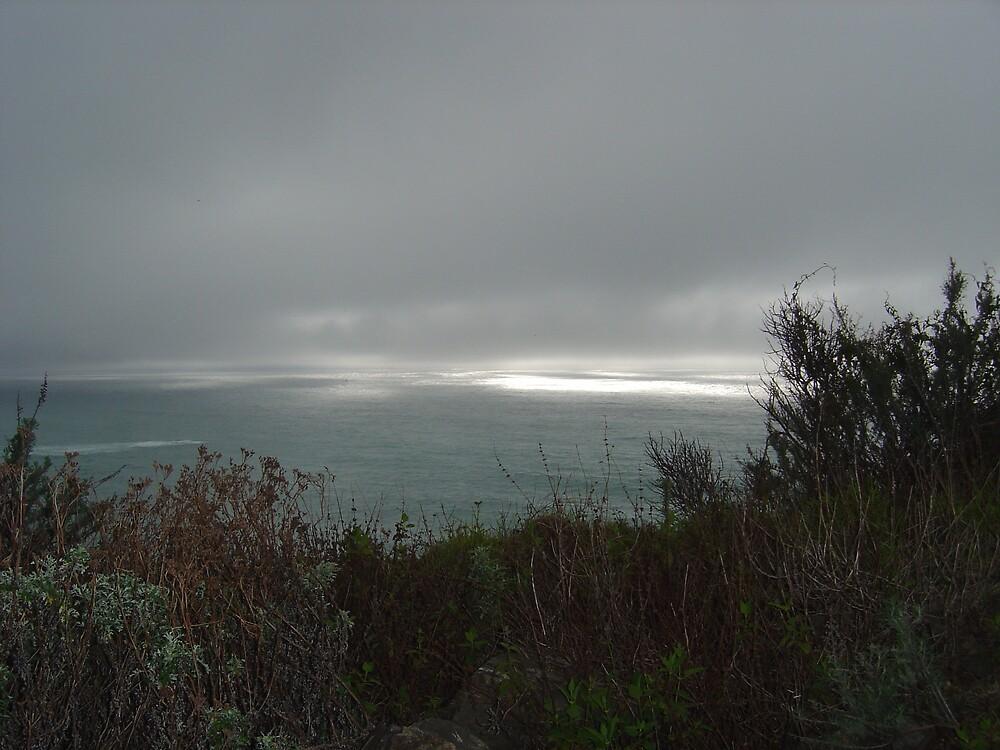 Foggy Sea V by Jerry Stewart