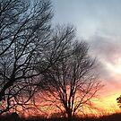 Untouched Sunset #2 by trisha22