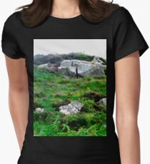 Irish boulders, Donegal, Ireland Womens Fitted T-Shirt