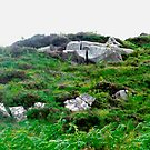Irish boulders, Donegal, Ireland by Shulie1