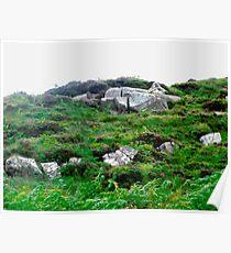 Irish boulders, Donegal, Ireland Poster