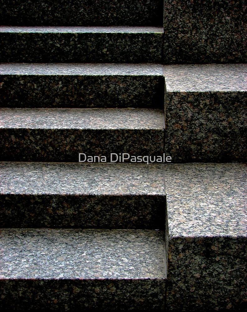Gradation by Dana DiPasquale