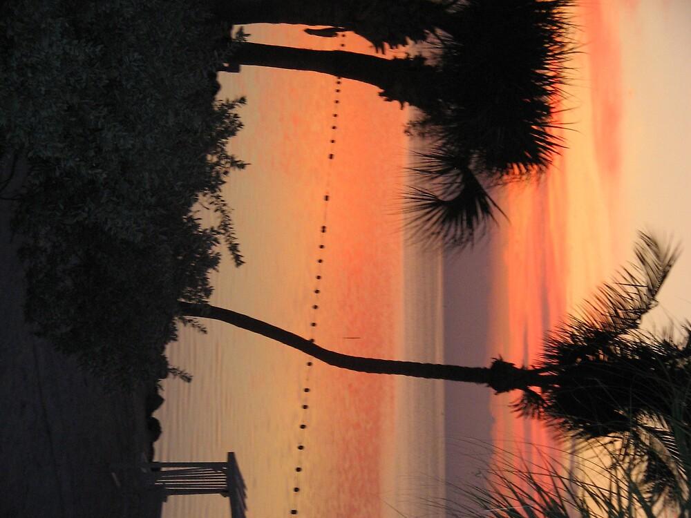 sunrise in paradise by srt63