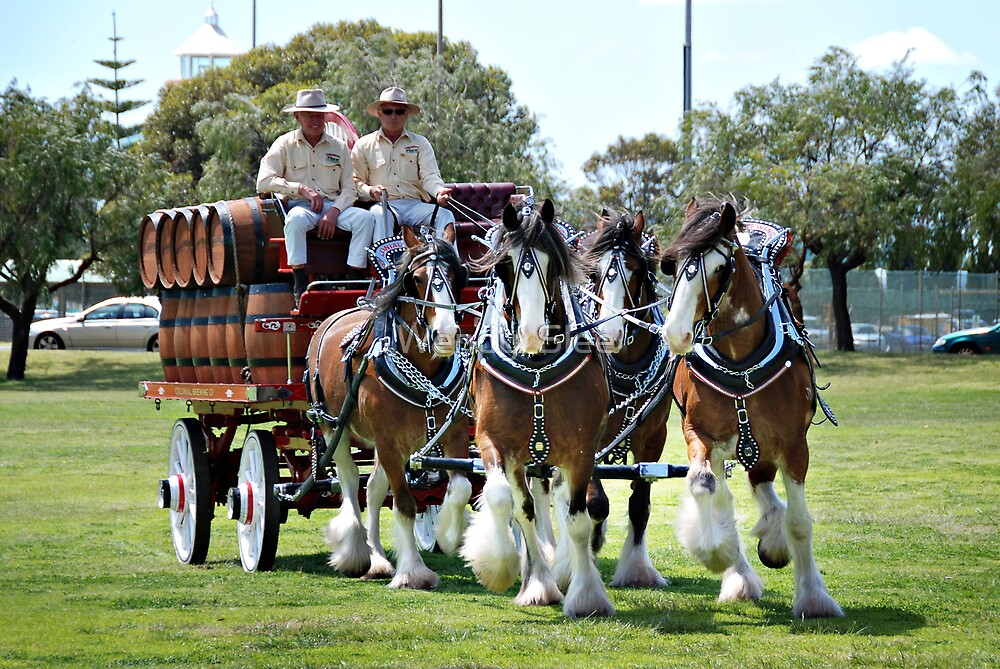 Colonial Brewing Co in Busselton by Wendy  Slee
