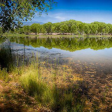 Dead Horse Ranch Park by BigRedCurlyGuy