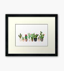 Kaktus Gerahmtes Wandbild