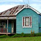 Farm House by Catherine Davis