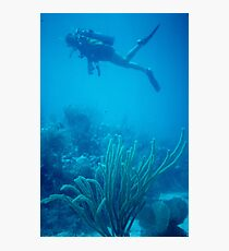 Scuba diving in the BVI Photographic Print