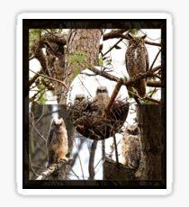 Owl Family Portrait Sticker