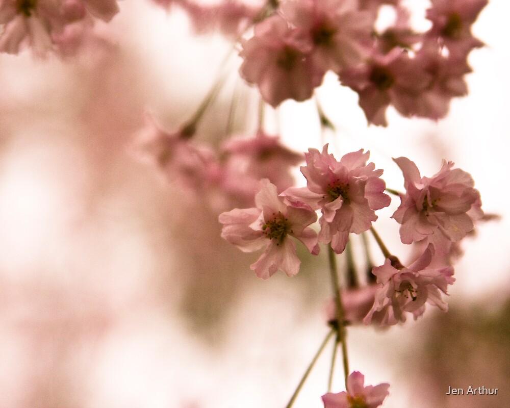 April Blossoms 1 by Jen Arthur