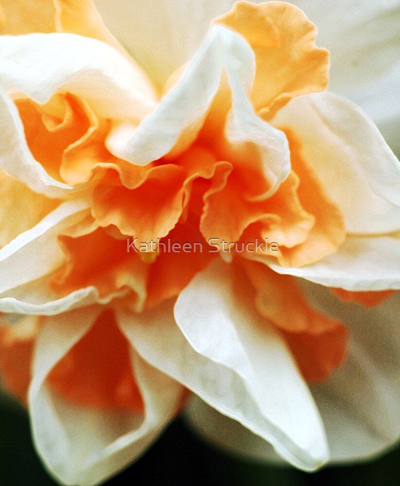 White And Orange Ruffles by Kathleen Struckle