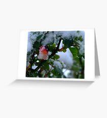 SnowBerry Greeting Card