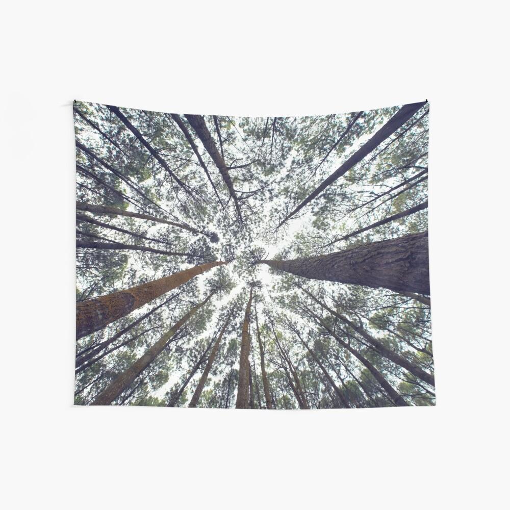 Licht durch die Bäume Wandbehang