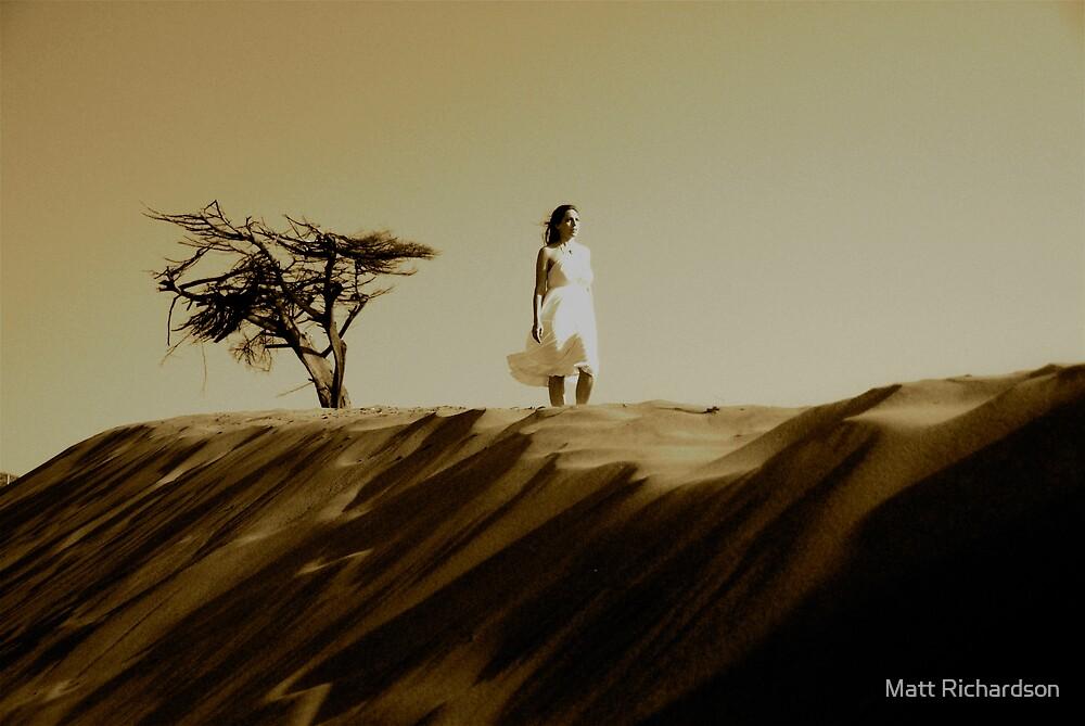 wayward  by Matt Richardson