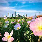 Dallas Spring Flower by josephhaubert