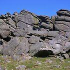 A Tumble Of Rocks (Hound Tor, Devon) by lezvee