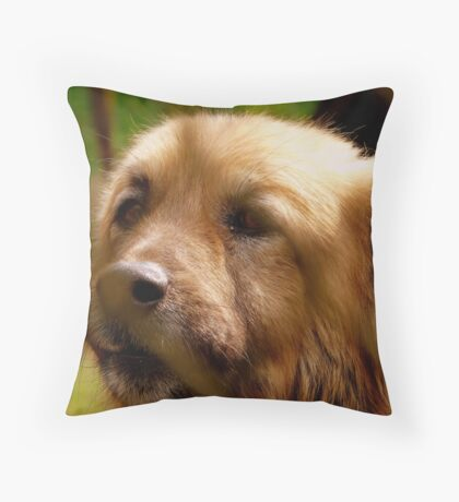 Behind the barrs Throw Pillow