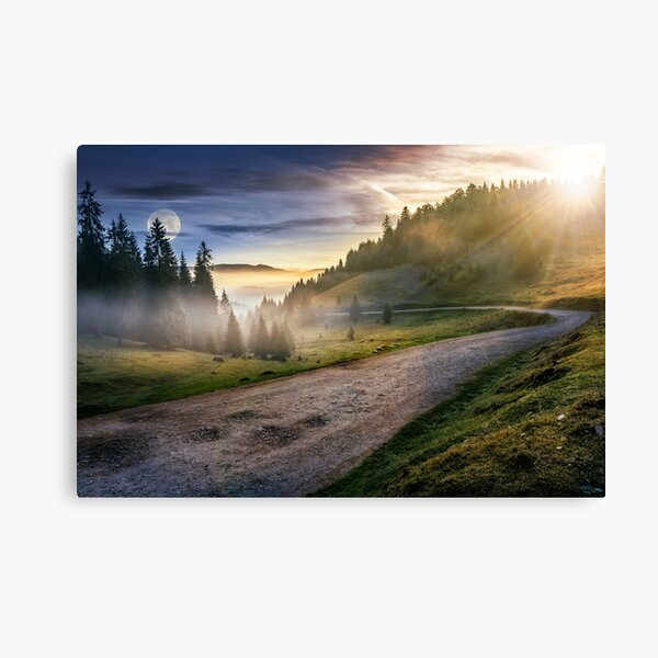 road near foggy forest in mountains Canvas Print