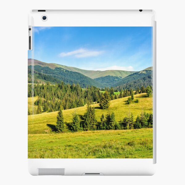 spruce forest on mountain meadow iPad Snap Case
