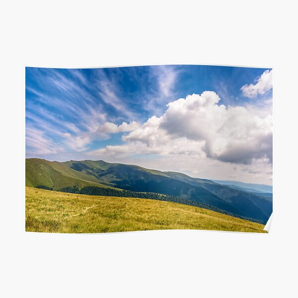 hill side meadow in summer Poster