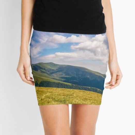hill side meadow in summer Mini Skirt