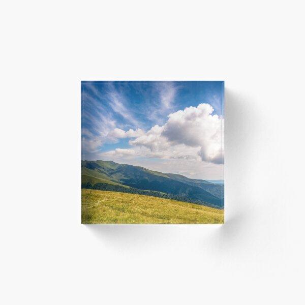 hill side meadow in summer Acrylic Block
