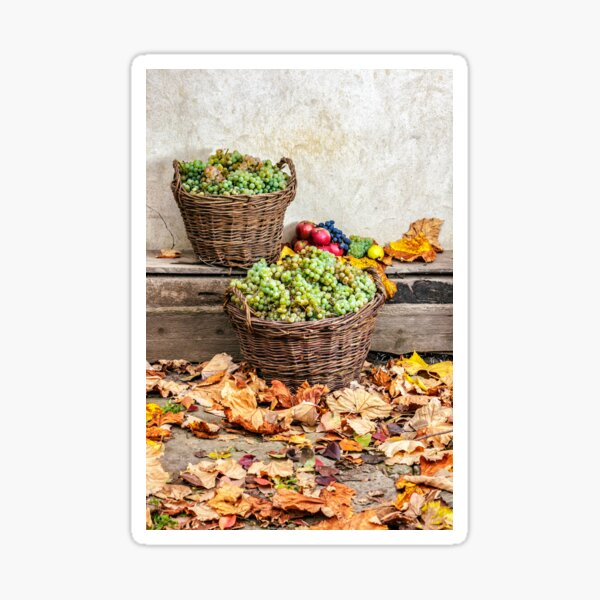 autumnal still life with fruit and leaves on a wooden base Sticker
