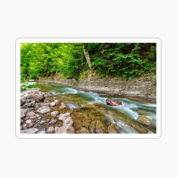 river with stones on shores anmong the forest Sticker