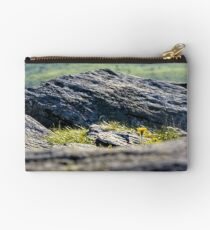 dandelion among the boulders on hill side Studio Pouch