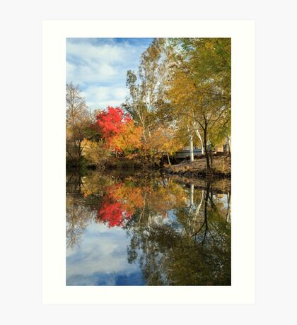 Autumn In Chico Art Print